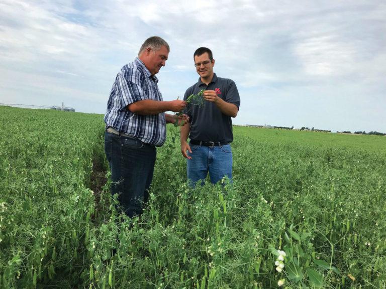 Strahinja Stepanovic working with farmer Steve Tucker
