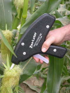 Photo C. Zea-later oil applicator being used to apply oil/Bt treatment to corn silk.