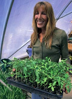 Organic vegetable transplants can fetch at least 30 percent more than conventional plants and are snapped up by eager gardeners at farmers markets across the country. Rebecca Sexauer of Deep River, Iowa, displays a tray of tomato transplants.