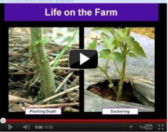 life on the farm webinar