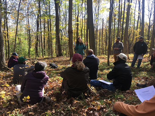 workshop held in a forest