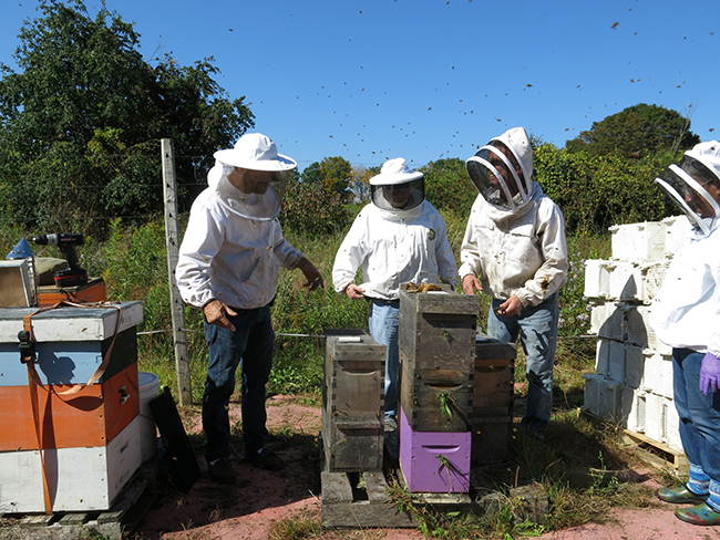 beekeepers with bee hives