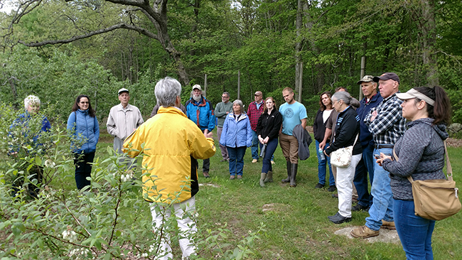 person giving a talk at blueberry field