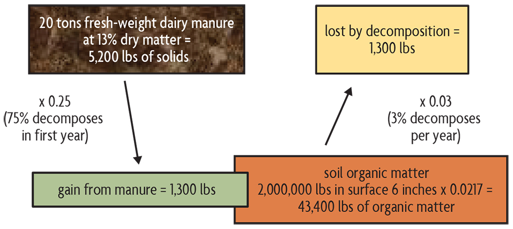 dairy manure