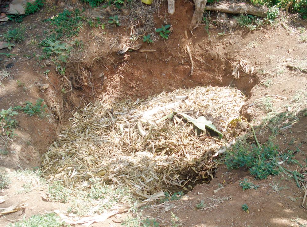 belowground composting pit