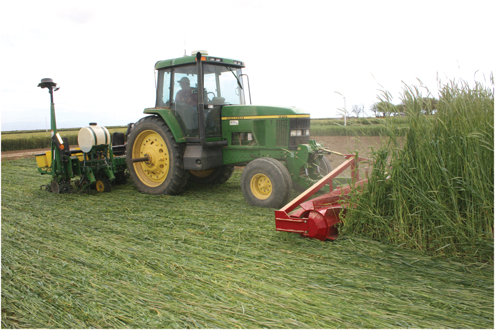 planting with a roller crimper