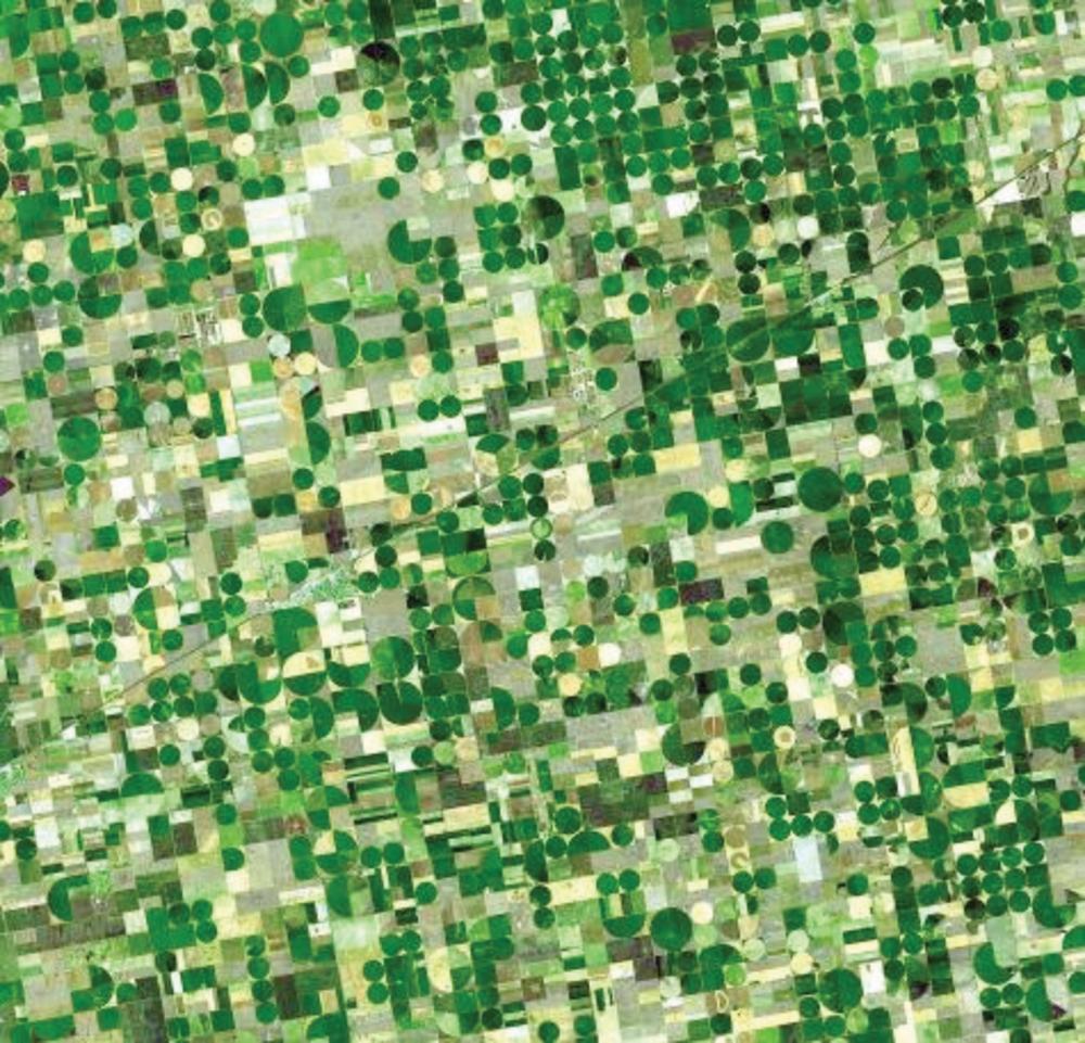 Satellite image of crop circles in southwest Kansas