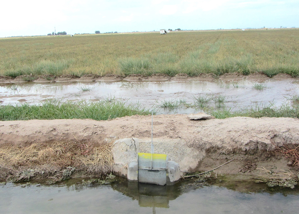irrigation field with tailwater discharge