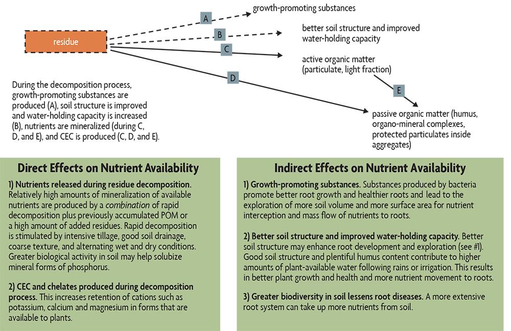 residue decomposition nutrient flow chart