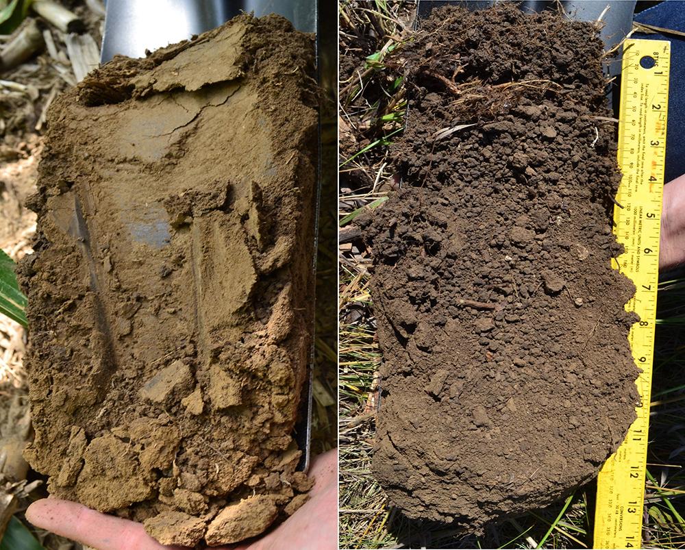Agricultural Soil Comparison