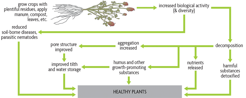 Changes caused organic matter