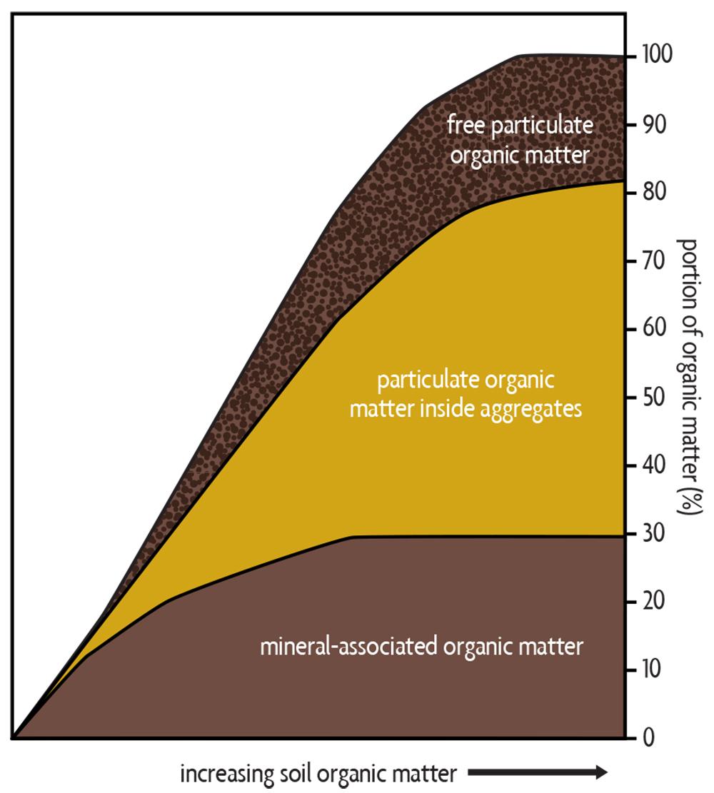 diagram of organic matter in soil