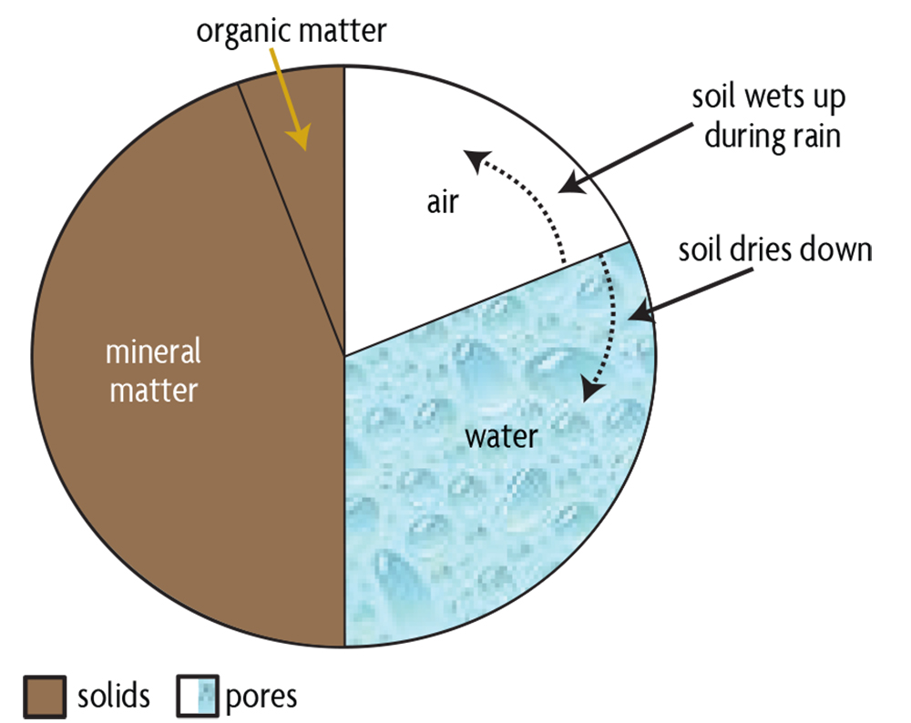 soil distribution