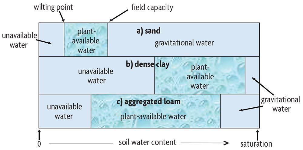diagram of water distribution in soils