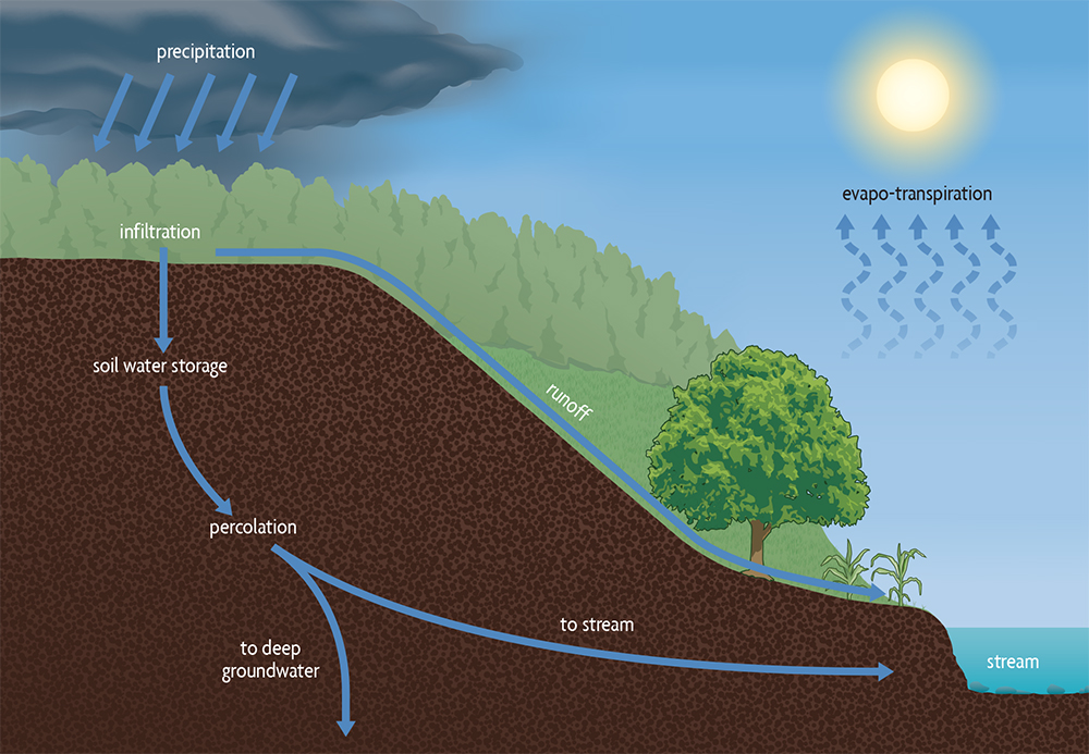 how soil infiltration differs diagram