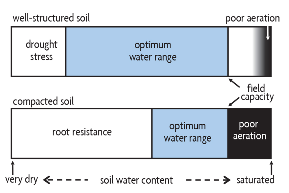 water range for crop growth