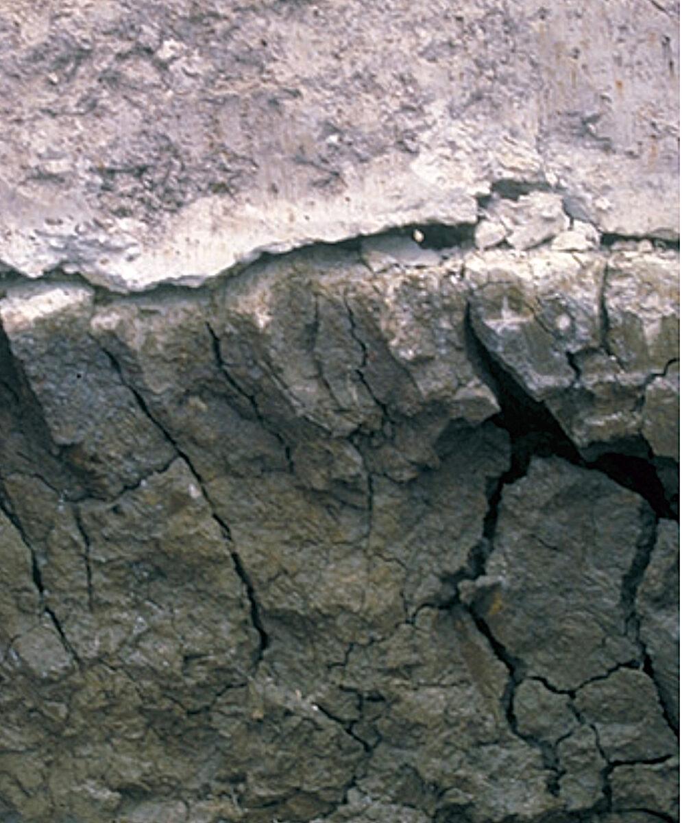 sodic soil in Tasmania, Australia