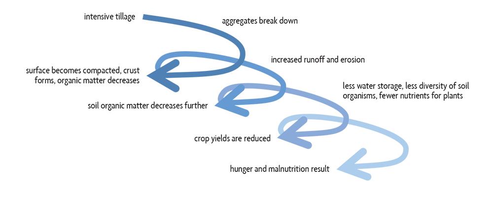 spiral of soil degradation