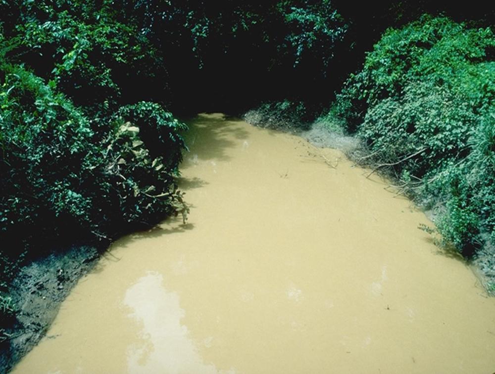 contaminated stream in Venezuela