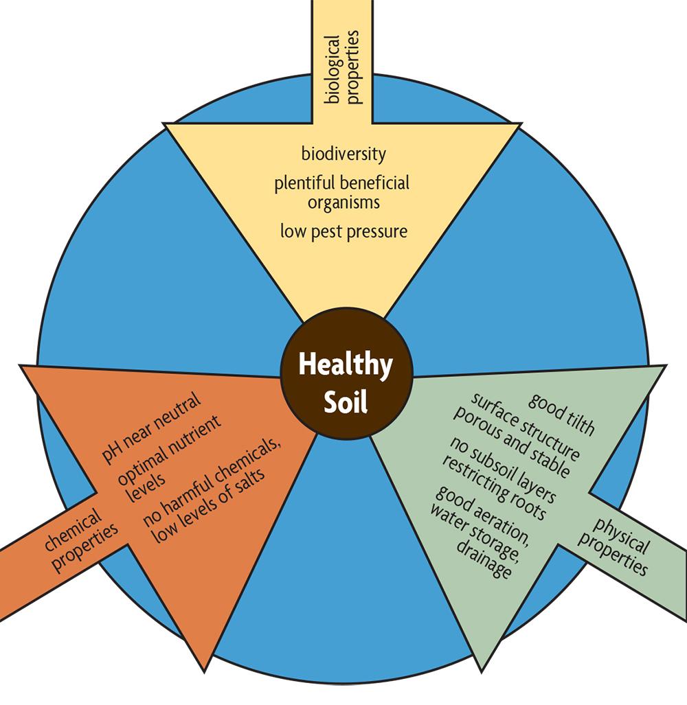 properties that promote healthy soils