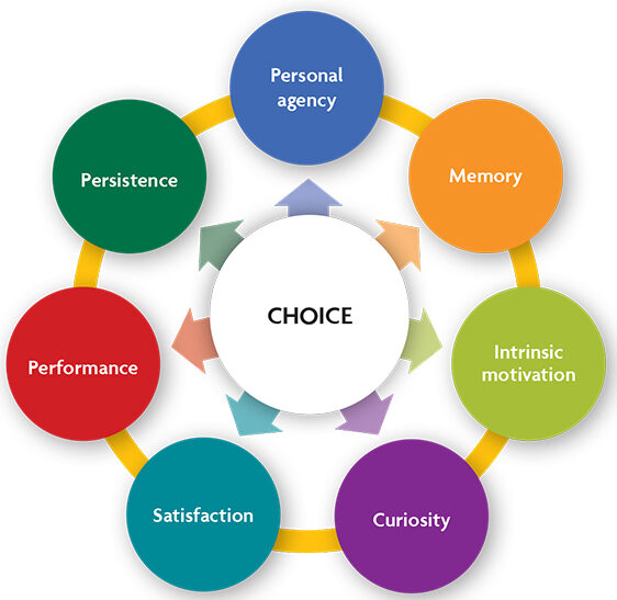 the positive impacts of choice on adult learning