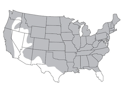 Map of the annual ryegrass