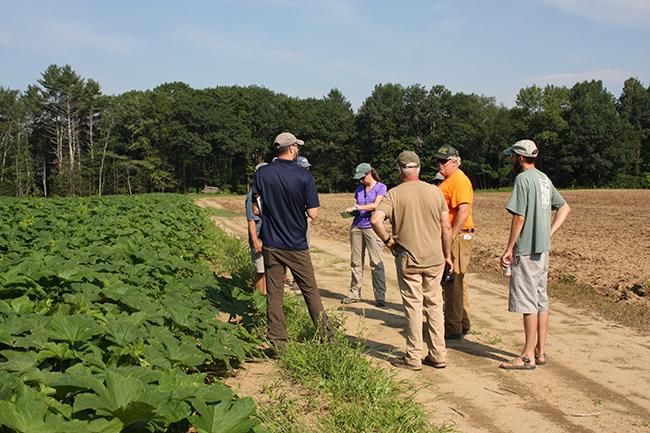 people talking in a field