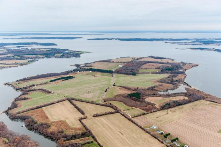 aerial view of farm fields along waters edge