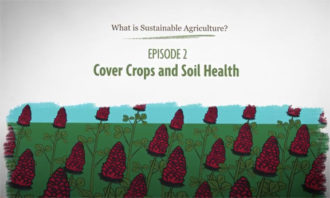 What is Sustainable Agriculture Animation Episode 2