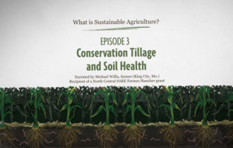 What is Sustainable Agriculture Animation Episode 3