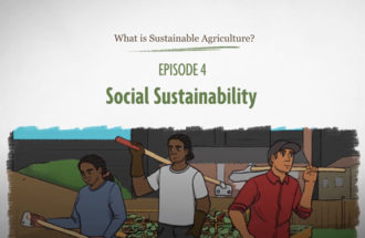 What is Sustainable Agriculture Animation Episode 4