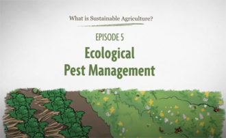 What is Sustainable Agriculture Animation Episode 5