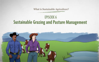 What is Sustainable Agriculture Animation Episode 6