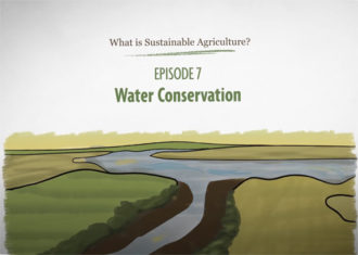 What is Sustainable Agriculture Animation Episode 7